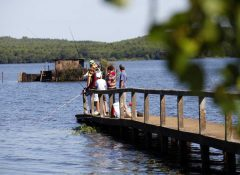 camping bord de lac Mimizan