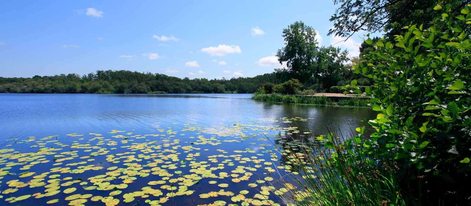Vacances camping bord de lac